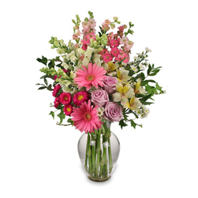 "7"" classic urn vase foliage: ivy, myrtle 2 pink gerberas 3 lavender roses 1 stem hot pink asters ('Motsumoto') 3 white snapdragons 2 stems bi-colored white & yellow alstroemeria 5 stems pink larkspur 2 stems white asters ('Monte Casino')"