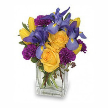"6"" rectangular vase foliage: seeded eucalyptus, variegated pittosporum 3 blue iris 2 yellow roses 4 yellow tulips 4 purple carnations"