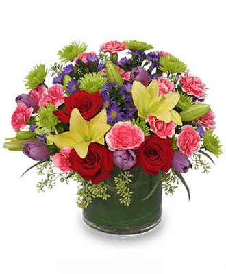 X Cylinder Vase Foliage: Aspidistra Leaf, Seeded Eucalyptus Red Charlotte Roses Pale Yellow Asiatic Lilies Lime Green Cushion Poms Variegated Pink & White Mini Carnations Purple Monte Casino Aster Lavender Tulips