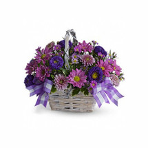 "The cheerful bouquet includes lavender daisy spray chrysanthemums, dark purple Matsumoto asters, lavender cushion spray chrysanthemums and purple Monte Cassino asters accented with fresh greenery. The flowers are delivered in a white bamboo basket accented with a lavender gingham ribbon. Approximately 12 1/2"" W x 10 1/2"" H"