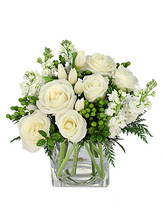 "6"" cube vase foliage: seasonal evergreens (cedar, holly)  white roses  stems white snaps  stems green hypericum"
