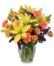 "7 1/4"" ginger vase foliage: leather leaf, variegated pittosporum orange miniature spray roses   yellow lilies orange carnations  purple statice  solidago"
