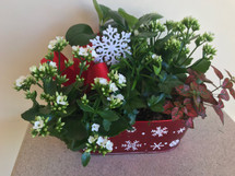 Christmas Holiday Planter