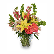 CAREFREE SPIRIT Flower Arrangement