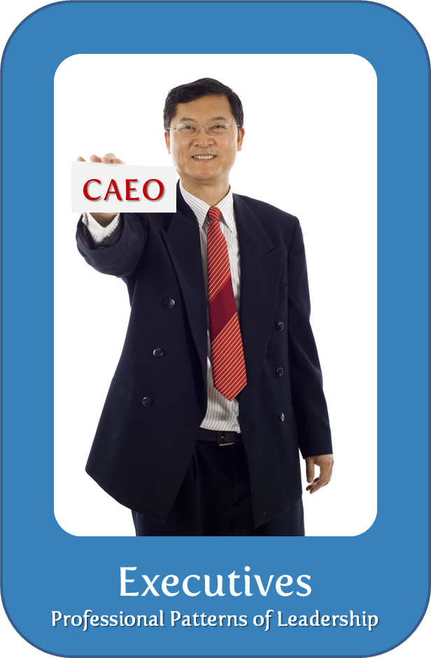 CAEO1.png