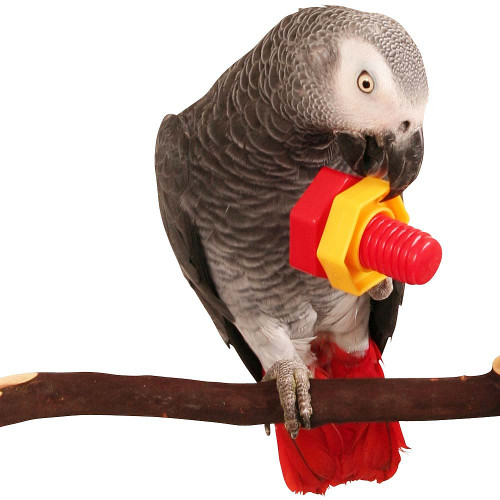 Jumbo Nut & Bolt Parrot Puzzle Foot Toy