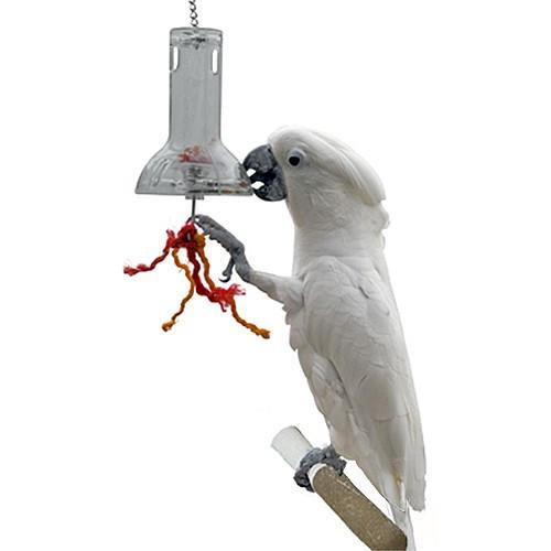 Foraging Capsule Advanced Enrichment Parrot Toy