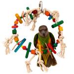 Block Ring Parrot Toy