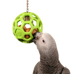 Hol-ee Roller Foraging Parrot Toy