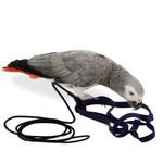 The Aviator Parrot Harness Medium