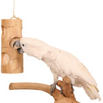 Ole Senior Bird Kabob - Parrot Toy