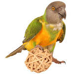 Munch Balls Woven Vine Chews for Parrots - Pack of 4