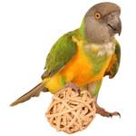 Munch Balls Woven Vine Chews for Parrots - Pack of 4