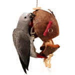 Coco - de - Nut Foraging Parrot Toy - Large