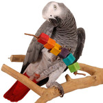Rainbow Cubes Large Parrot Foot Toy