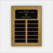 ΨΒ Chapter Excellence Plaque