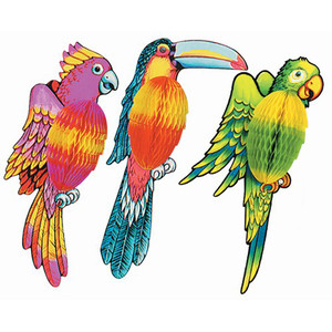 Tissue Exotic Birds
