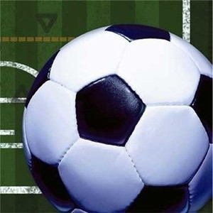 Soccerball and Field Beverage Napkins 16 Pack
