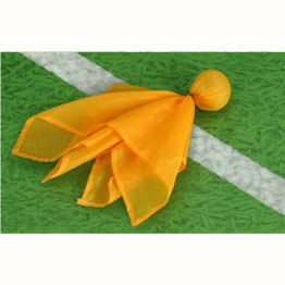 Penalty Flag 1 Count