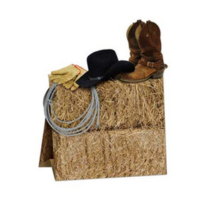3-D Western Centerpiece Party Accessory