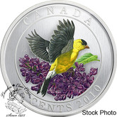Canada: 2010 25 Cents Goldfinch Coloured Coin