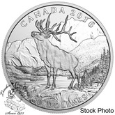 Canada: 2016 $100 The Noble Elk Silver Coin