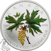 Canada: 2005 $5 Green Coloured Silver Maple Leaf Coin