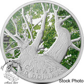 Canada: 2013 $20 Canadian Maple Canopy Spring Silver Coin
