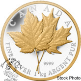 Canada: 2013 $250 Maple Leaf for Ever Kilogram Silver Coin