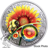 Canada: 2017 $20 Mother Nature's Magnification- beauty under the sun Silver Coin