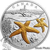 Canada: 2017 $20 From Sea To Sea To Sea: Atlantic Starfish Silver Coin