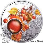 Canada: 2018 $20 Mother Nature's Magnification: Morning Dew Silver Coin