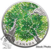 Canada: 2018 $30 Canadian Canopy: The Maple Leaf Pure Silver Coloured Coin