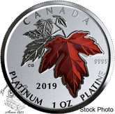 Canada: 2019 $300 Maple Leaf Forever Pure Platinum Coin