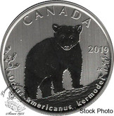 Canada: 2019 50 Cent Wildlife Treasures: Kermode Bear Specimen
