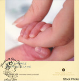 Canada: 2005 P Baby Gift Coin Set