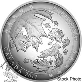Canada: 2017 $50 Maple Leaves in Motion Convex 5 oz. Fine Silver Coin