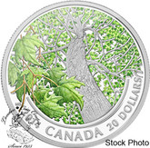Canada: 2014 $20 Maple Canopy Spring Splendour Coloured Silver Coin