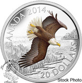 Canada: 2014 $20 Soaring Bald Eagle Coloured Silver Coin