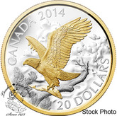 Canada: 2014 $20 Perched Bald Eagle Gold Plated Silver Coin
