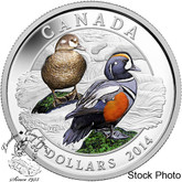 Canada: 2014 $10 Harlequin Duck Silver Coin