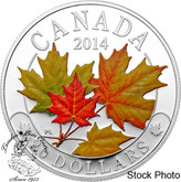 Canada: 2014 $20 Majestic Maple Leaves Coloured Silver Coin