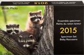 Canada: 2015 Specimen Coin Set with Baby Raccoon Toonie