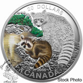 Canada: 2016 $20 Baby Animals Raccoon Silver Coin