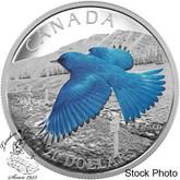 Canada: 2016 $20 Migratory Birds Convention - The Mountain Bluebird Silver Coin