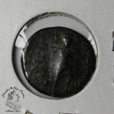 Syria: Leukas - Claudia, Balanea,1st-2nd century AD