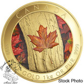 Canada: 2016 $2500 Maple Leaf Forever Pure Gold Coin