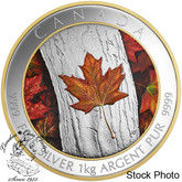 Canada: 2016 $250 Maple Leaf Forever Kilogram Silver Coin