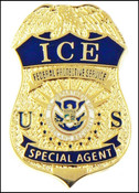 ICE Federal Protective Service Special Agent Mini Badge Lapel Pin