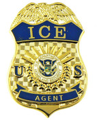 Immigration and Customs Enforcement Agent Mini Badge Lapel Pin